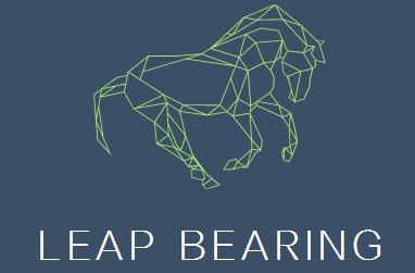 Leap Bearing Service