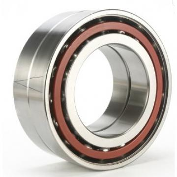 6009ZZE Nachi Bearing Shielded C3 Japan 45x75x16 9539